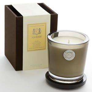 Best candle- Aquiesse Sandalwood Vanille Candle