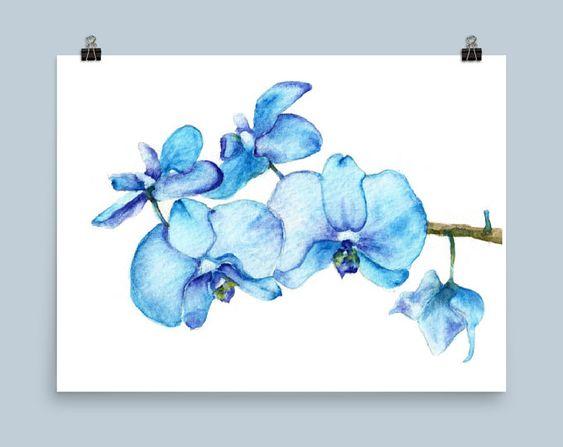 Bleu Orchidees One Botanique Art Print De Peinture Aquarelle Etsy