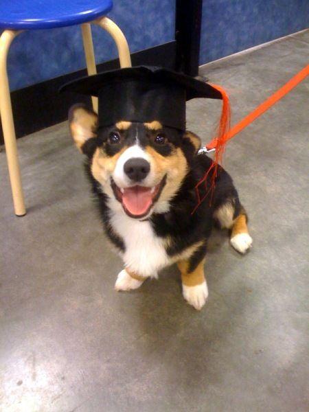 Kenji: Graduation