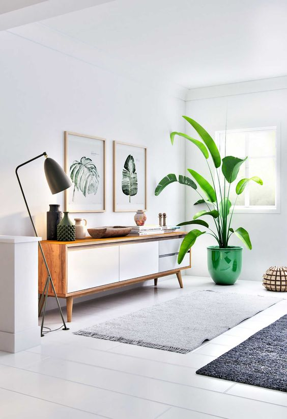 Don't look at the price of the furniture, this is only to give you ideas to decorate with a tall plant and light on the other side.