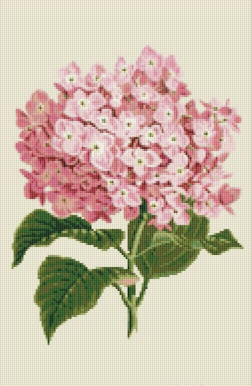Elegant Bamboo DIY Chart Counted Cross Stitch Patterns Needlework DMC Color