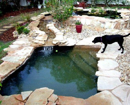 This is a real snazzy looking pool you may want for yourself. With the stone surround it looks like it took you forever to landscape and a little waterfall completes that look.