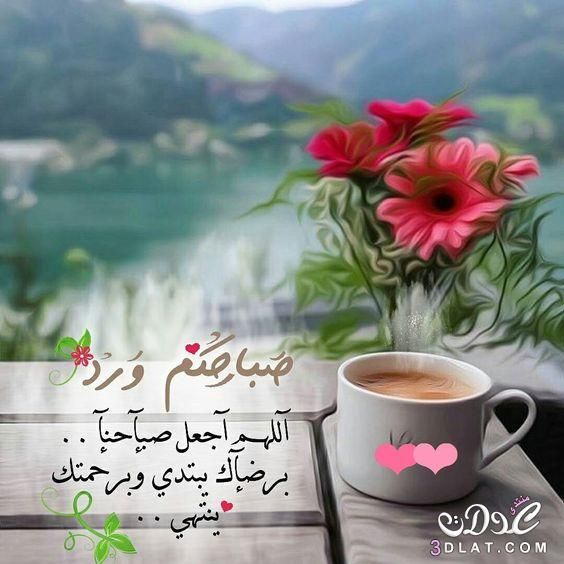 صباح الخير حديثة 2018 ادعية صباحية 3dlat Net 25 17 F1b3 Good Morning Flowers Good Morning Arabic Beautiful Morning Messages