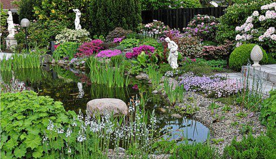Teichrand gestalten Richtige Bepflanzung! Gartenweltde Water - naturlicher bachlauf garten