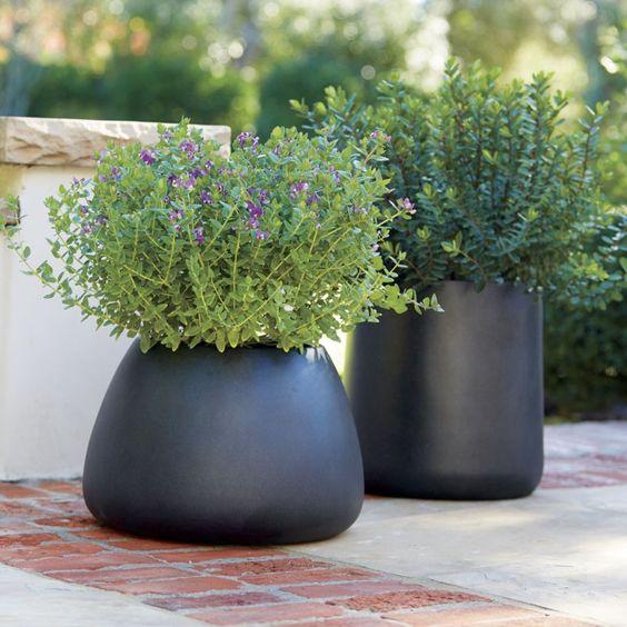 zwarte plantenbakken verschillende hoogtes