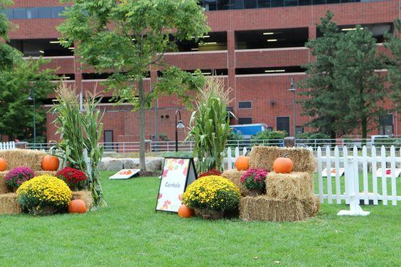 Fall Harvest Theme
