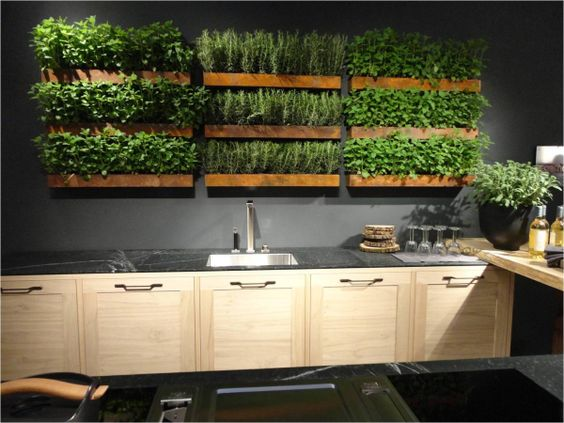 Ideas for designing indoor gardens I would love an indoor herb garden similar to something like this in my kitchen, it's visually arresting, yet practical and functional luxury to be able to reach up and snip off fresh herbs off my kitchen walls as I need them to prepare yummy meals.: