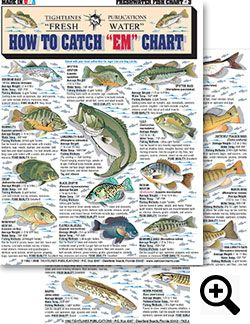 How to Identify Freshwater species, Shad, Perch, Walleye, Bluegill, Crappie, Trout and Bass - The Best Charts For Freshwater Fishing Identification, Knot Tying and Catching Fish