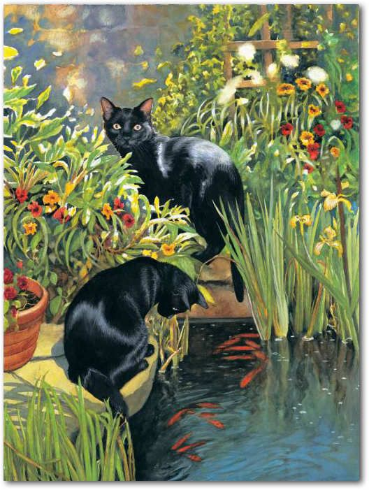 Sunsout 1000 piece black cats and koi pond jigsaw puzzle for Koi pond maine coon cattery