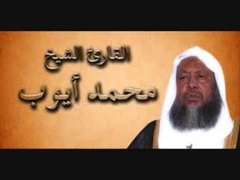 سورة البقرة كاملة حجازية القارئ الشيخ محمد أيوب Youtube Youtube Furry Friend Most Beautiful