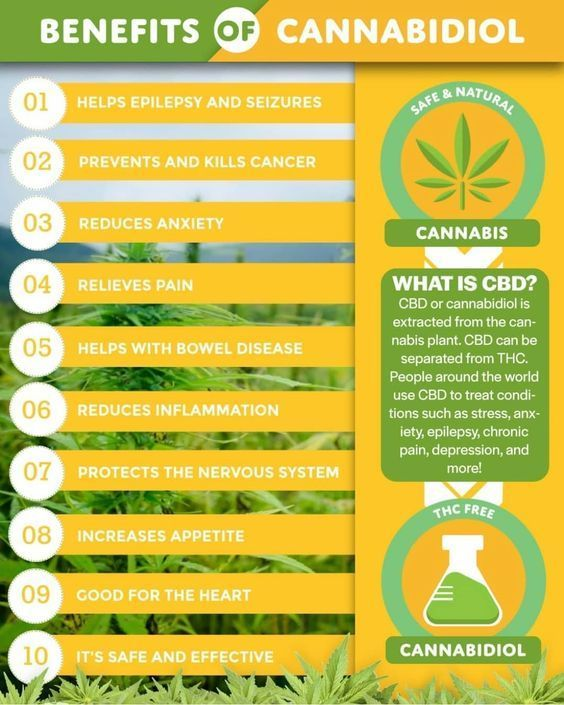 7 Benefits and Uses of CBD Oil - Night ...