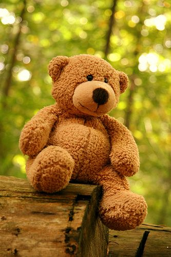 The world of the teddy bear is an innocent one, a world that gives delight and hurts not, a world that appeals to all generations and all nationalities. - Gyles Brandreth