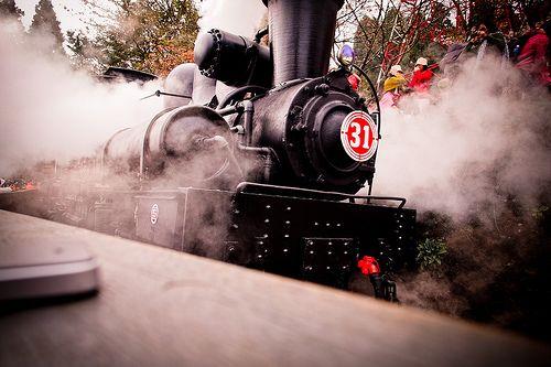*阿里山蒸汽火車|12mm