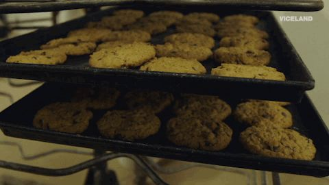 cookies dead set on life baked goods #humor #hilarious #funny #lol #rofl #lmao #memes #cute