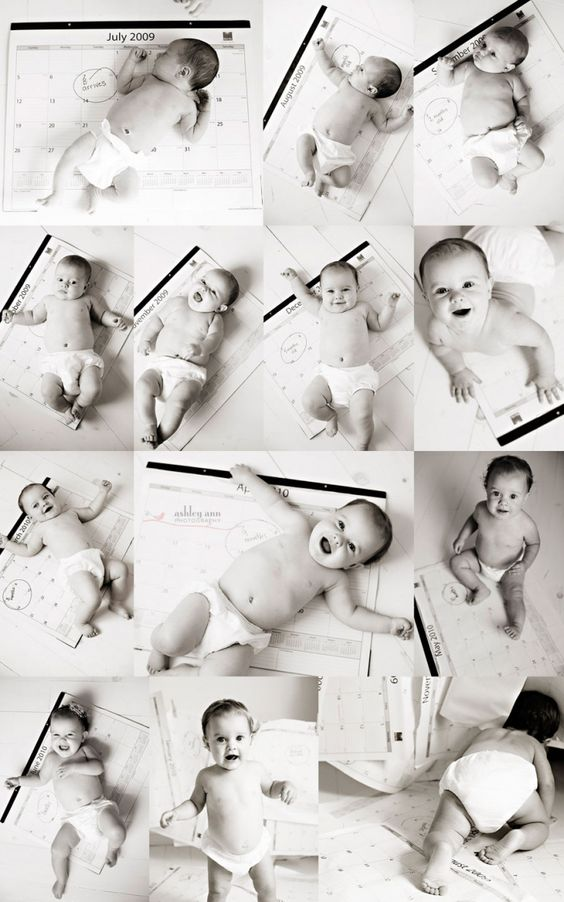 cute monthly baby photos