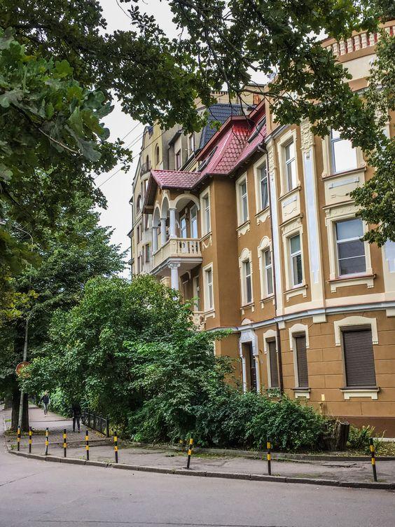 В начале сентября в Калининграде еще много зелени. Фото Жени Шведы