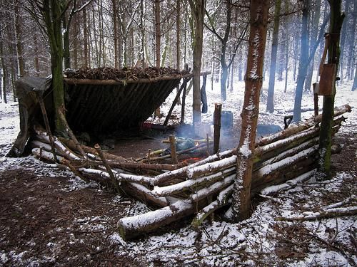 how to build a log shelter