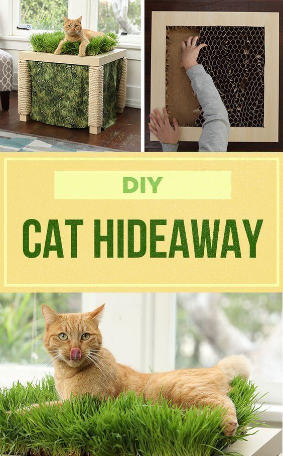 Cat Hideaway Table Haustiere Katzen