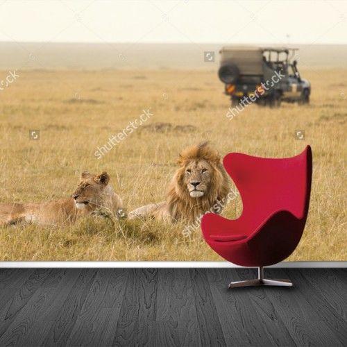 Fotobehang Leeuwen safari | Maak het jezelf eenvoudig en bestel fotobehang voorzien van een lijmlaag bij YouPri om zo gemakkelijk jouw woonruimte een nieuwe stijl te geven. Voor het behangen heb je alleen water nodig!   #behang #fotobehang #print #opdruk #afbeelding #diy #behangen #safari #afrika #afrikaans #dieren #dier #leeuwen #leeuw