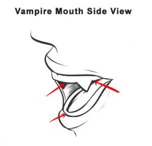 how to draw teeth from the side