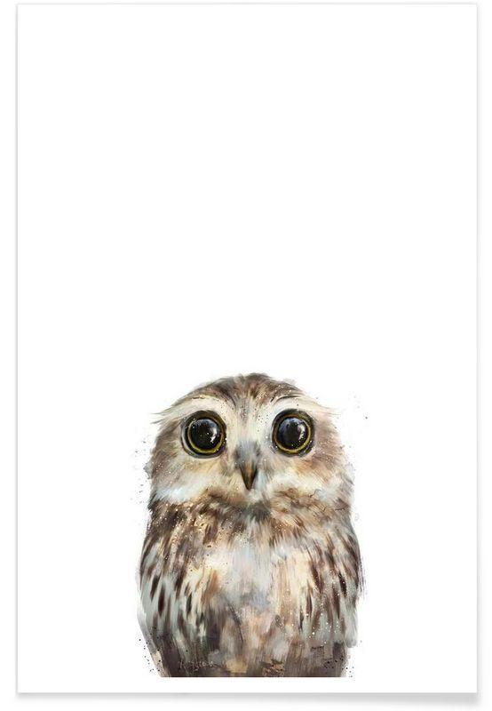 Little Owl As Premium Poster By Amy Hamilton Juniqe Susseste Haustiere Eulen Leinwand Tierkunst