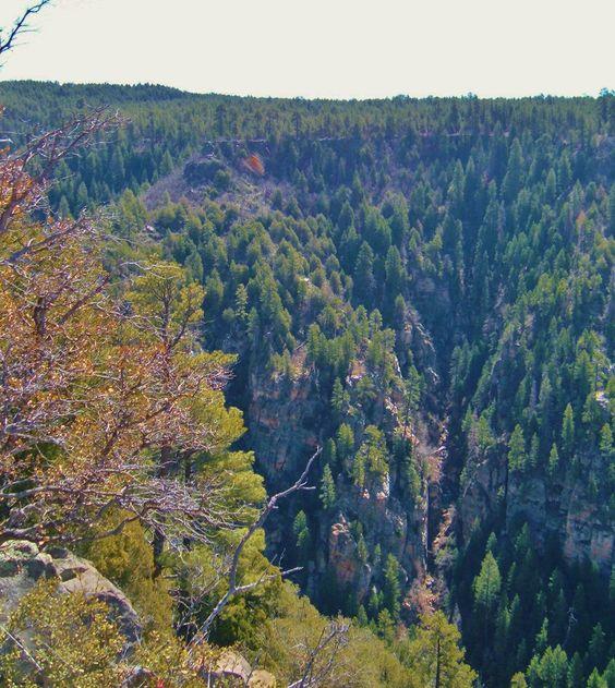 Sedona Canyon