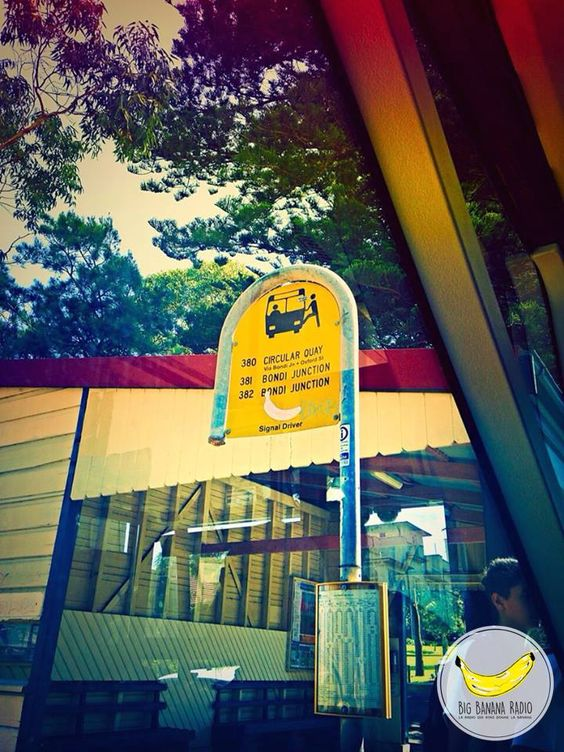 Photo By Chloe - Banana in Australia !