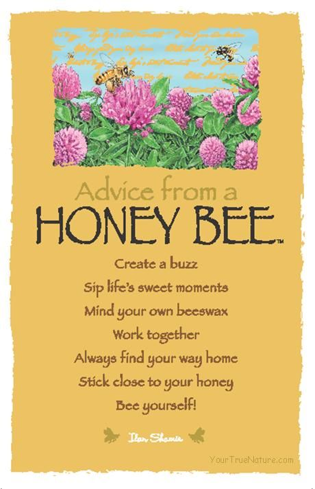 Spirit Totem Animals:  #Advice from a #Honey #Bee.