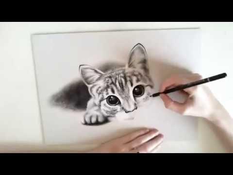 Katzenzeichnung Fur Anfanger Zeichne Tiere Katze Zeichnen Fur Anfanger Tiere Zeichnen Katze Zeichnen Tiere Zeichnen Katzenzeichnung