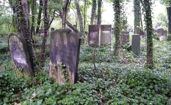 Jewish Tombstone Fragments Pulled From Polish River - Breaking News – Forward.com