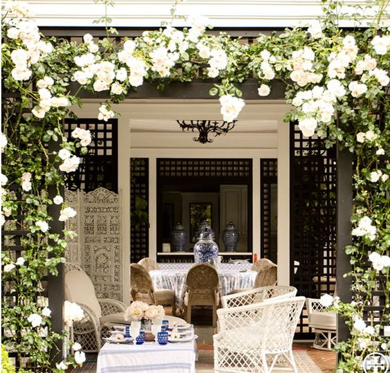 I didn't know I liked white climbing roses, but now I do! Tory Burch's covered porch.: