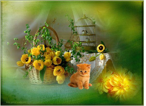 Mes créas fleurs: