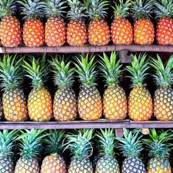 Good morning my little pineapples. #DidYouKnow: If you dream about eating or serving pineapple, you will have social success. If you dream of growing or harvesting pineapple, you will have a steamy new love affair. #howyoulikethemapples