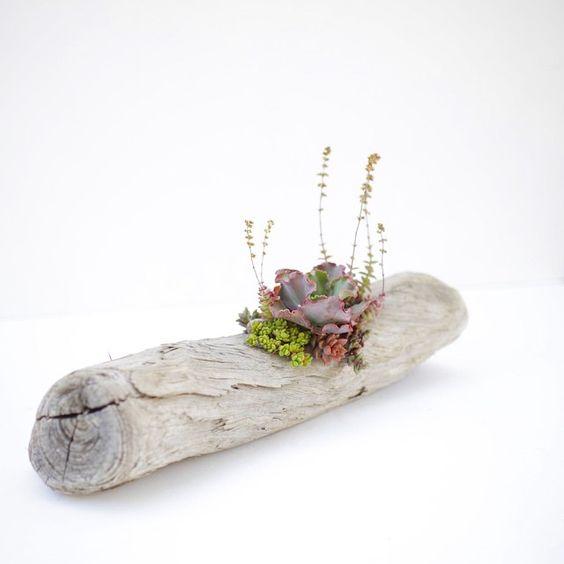Driftwood Planter: