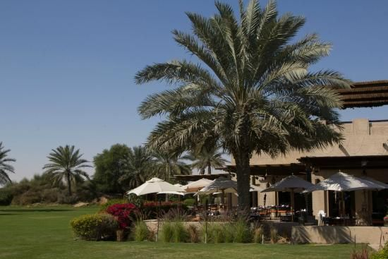 middle east garden - Google Search