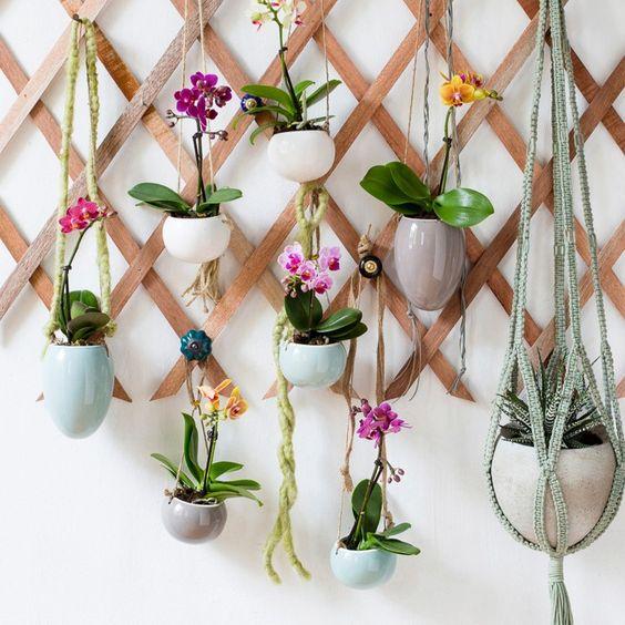 style met een twist en laat de mini orchidee n lekker bungelen intratuin orchidee bungelen. Black Bedroom Furniture Sets. Home Design Ideas