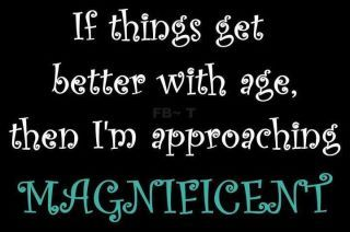aging....   IF THINGS GET BETTER WITH AGE, THEN I'M APPROACHING MAGNIFICENT!                             ****