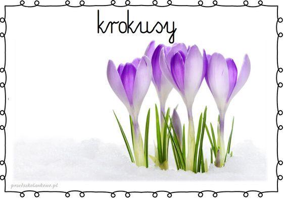 Wiosenne Kwiaty Plansze Zestaw 1 Przedszkolankowo Fun Winter Crafts Spring Activities Spring Flowers