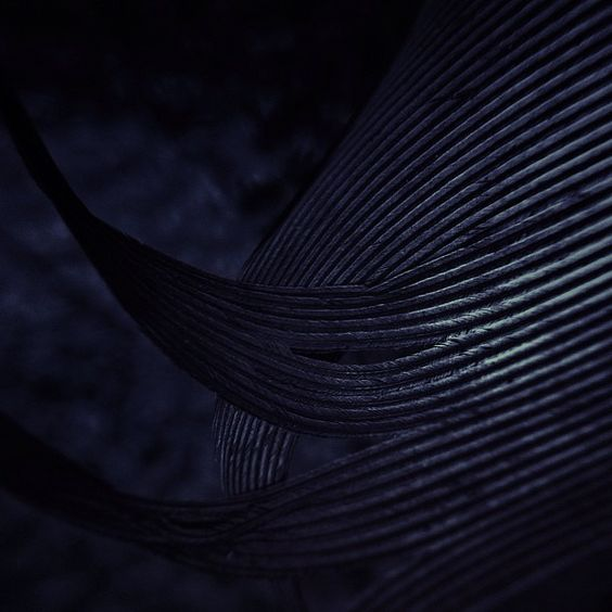 @finny_c | feather at night | Instagram: Blue, Lines, Feathers, Beautiful Things