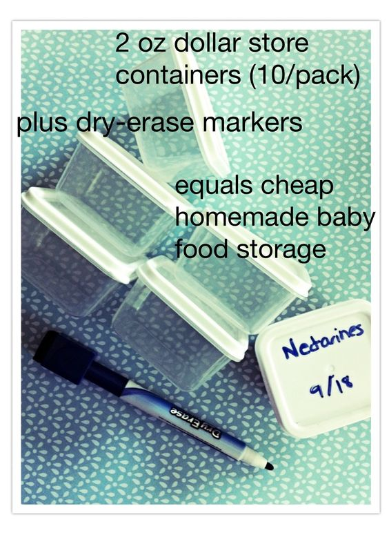 Cheap homemade baby food storage