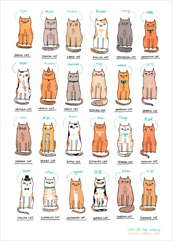 """Cats of the world"" Gemma Correll's limited edition art print at L'Affiche Moderne"
