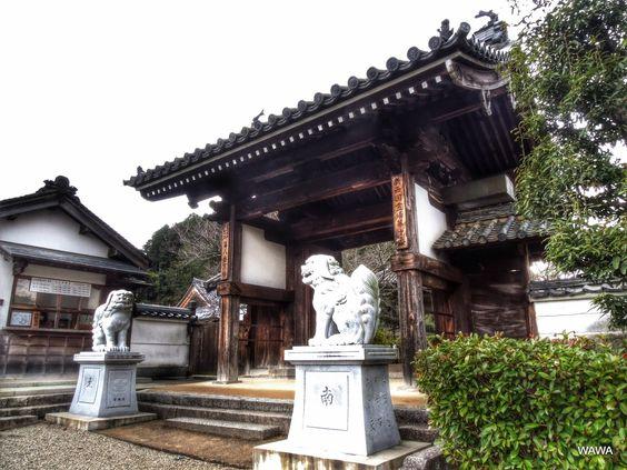 橘寺 奈良県明日香村にある天台宗の寺院、聖徳太子建立七大寺院の一つ お寺に狛犬