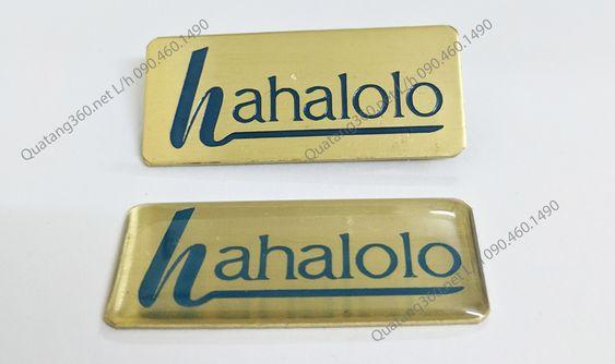 Huy hiệu đồng ăn mòn hahalolo