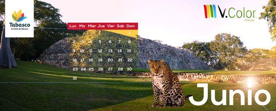 Calendario Junio 2014 ¡Descárgalo!