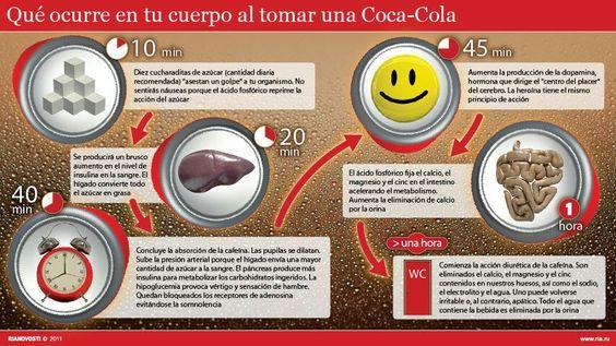 Infografia cuando tomas una Coca-Cola.
