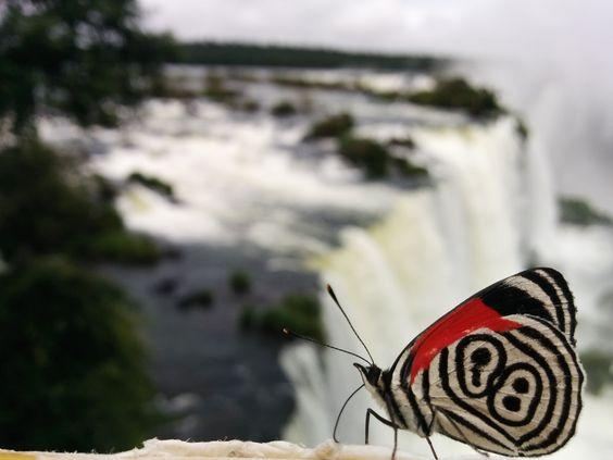 Brasil - Iguazu - Falls