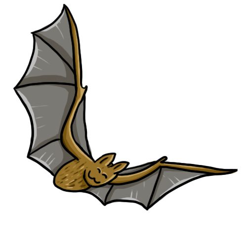 Download Free Bat Stencil, Download Free Clip Art, Free Clip - Printable  Halloween Decorations Bats - Png Download (#1227447) - PinClipart