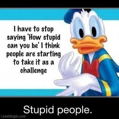 stupid people funny quotes quote lol funny   quote funny quotes daffy duck humor- Don