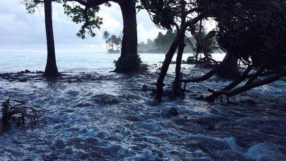 Gezin uit Tuvalu eerste klimaatvluchtelingen ter wereld  Leden van een gezin uit Tuvalu, deel van het tropische eilandenrijk Polynesië, hebben onlangs op klimatologische gronden een verblijfsvergunning in Nieuw-Zeeland gekregen. Daarmee zijn zij de eerste officiële klimaatvluchtelingen ter wereld.  Door: Sterre Lindhout 14 augustus 2014, 06:00