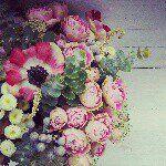 """Maria en Instagram: """"Hoy se casa Rebeca con este ramo de flores preservadas. #ramodenovia #ramopreservado #bouquet #noviasdeotoño #noviasfloresenelcolumpio"""""""
